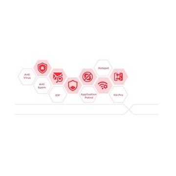 LIC-SDWAN balíček servisních licencí pro VPN300 1 Rok